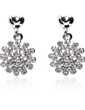 Snowflakes Shaped Alloy With Rhinestone Ladies' Earrings (011019269)