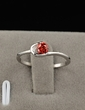 Nice Zircon/Platinum Plated Ladies' Rings (011055244)