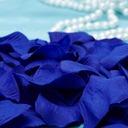 Royal Blue Rose Petals (Set of 5 packs)